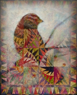 Sparrow Revisited