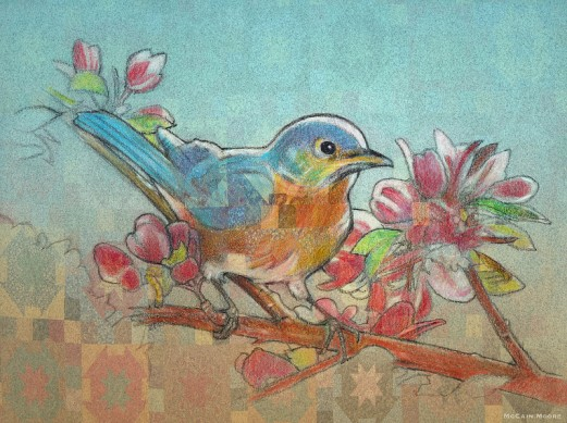 Moutain Blue Bird